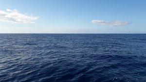 Keine Wale zu sehen